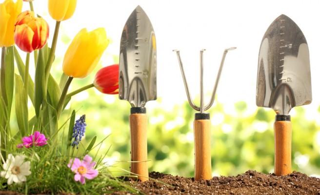 jardineria veronicas