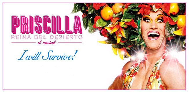 Priscilla-banner