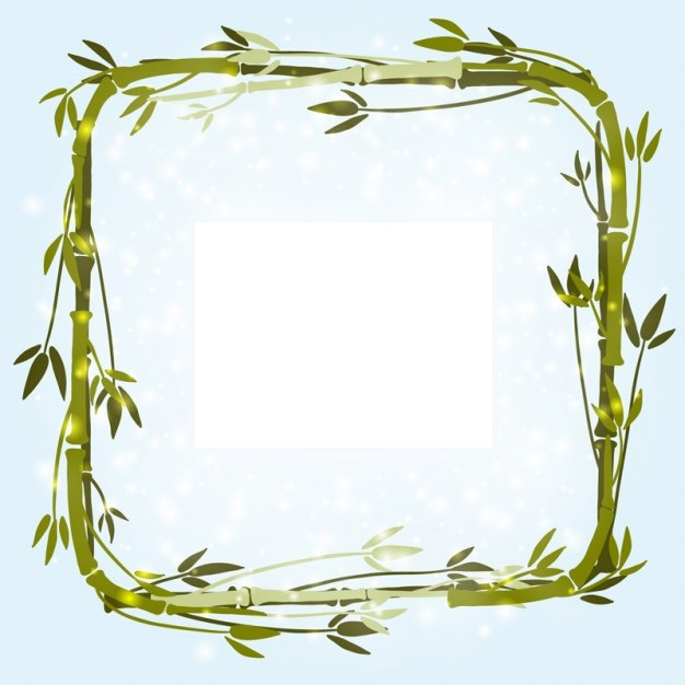 marco bambo