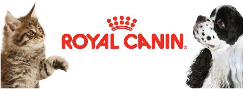 royal canin nutricion