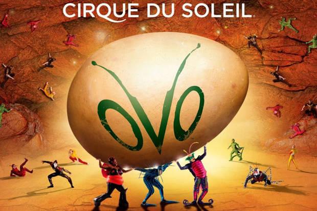 circque5